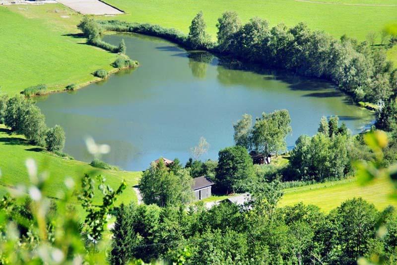 Hofi s angelteich piesendorf fischerei in salzburg for Teich mit fischen